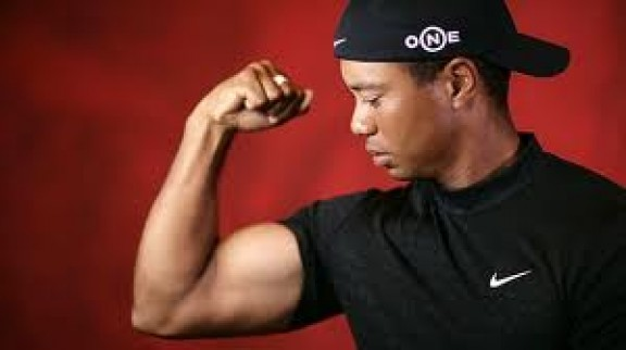 Tigers Woods new stroke