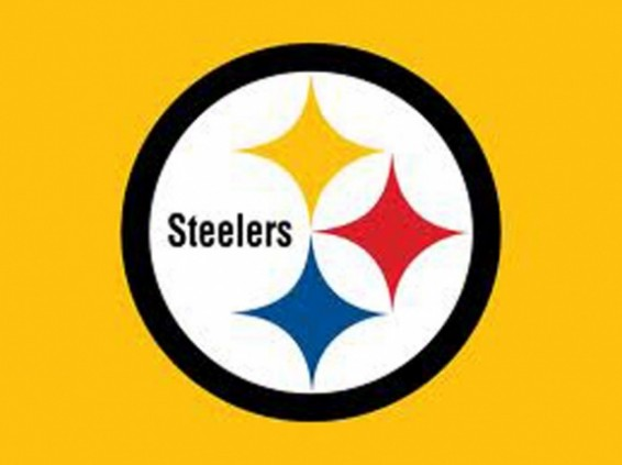 Steelers AFC North 2013