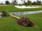 Bad Weather at Doral