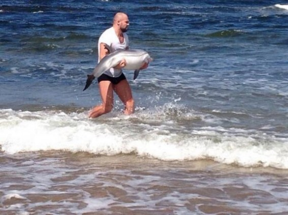 Cathal Pendred works an hour trying to save dolphin