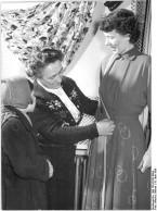 .............tailor.Erfurt.Wlocka.Wehse.GFA.1956.wc.cca69k