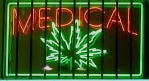 .....marijuana-sign.wc.SFV-LA-CA.170k.L.Avocado