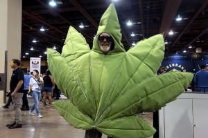 .....marijuana.Phx.10.16.16.G.Skidmore.SCCE.8m